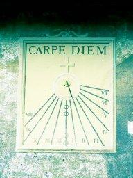 carpedung