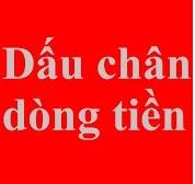 dauchandongtien